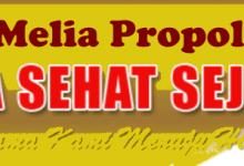 melia propolis pusat
